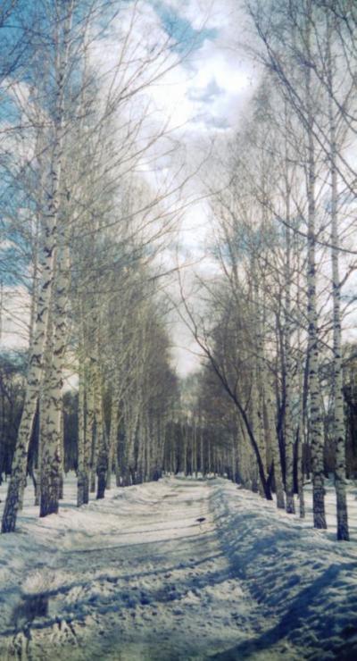 Image11зима.JPG