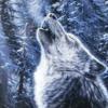 Аватар пользователя Legendswolf